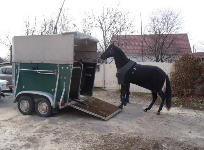 Как сделать своими руками коневозку